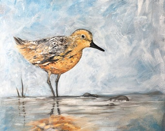 Tidal Forage - The Red Knot - Original Oil Painting by Ericka O'Rourke