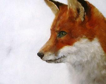Grizzly Fox print by Heidi Langridge