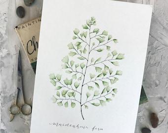 Watercolor Maidenhair Fern Print, Botanical Illustration Print, Fern Print, Home Decor Print