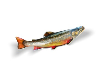 Brook Trout Decal, Brook Trout Sticker, Brook Trout, Trout