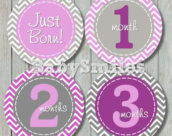 FREE GIFT Monthly Baby Stickers Baby Month Stickers Baby Girl Month Stickers Monthly Bodysuit Sticker Milestone Sticker Sweet Purple Chevron
