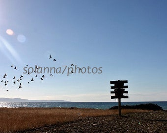 Pigeon House in Pomos,  Pafos Land, Cyprus Photography, Seascape, Wall Hanging Art