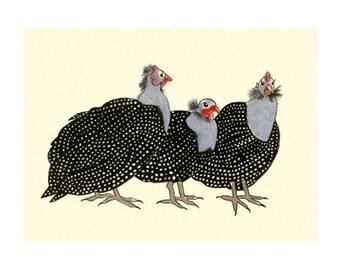 "Guinea fowl bird art -  Geraldine, Dita and Hedy  - 8.3"" X 11.8"" print - 4 for 3 SALE"