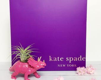 Hot Pink Triceratops Gold Accents Dinosaur Planter + Air Plant   Upcycled Planter   Home Decor Office Planter   Dorm Decor   Desk Accessory