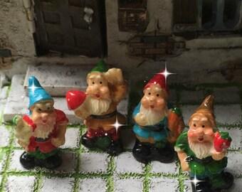 Fairy Garden, Micro Mini Gnome, Tiny Gnome, Mini Gnome, Micro Gnome,