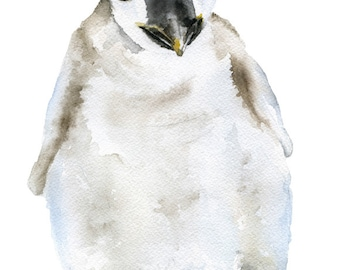 Baby Penguin Watercolor Painting 4 x 6 Fine Art Giclee Reproduction - Nursery Art