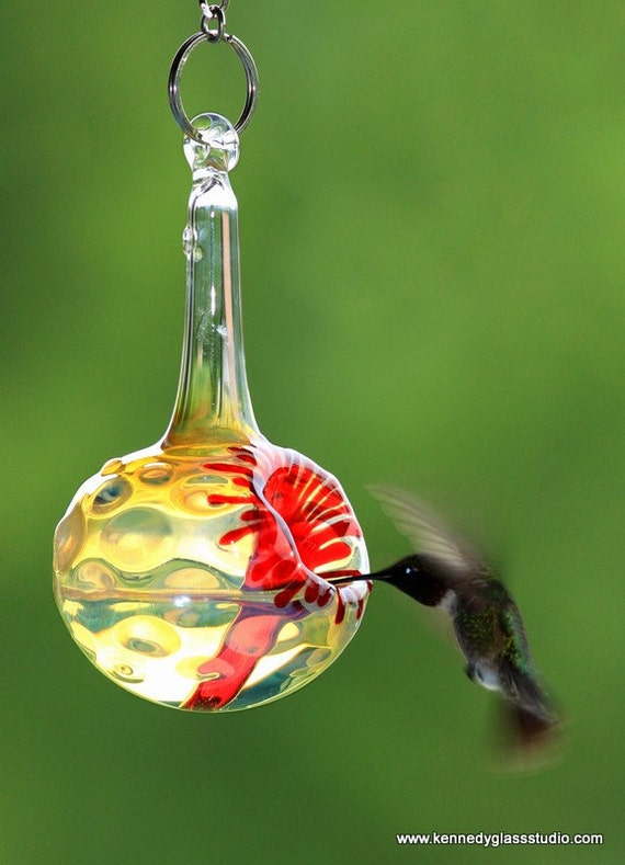 aspects com hzl ounce amazon humming bird ultra hummzinger dp hummingbird feeder