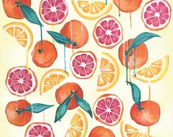 Citrus | 12 x 12 Signed Giclee Print