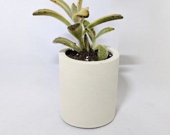 Concrete Planter | Succulent Planter | Geometric Planter | Plant Pot| Decorative Concrete | Handmade Planter | Candle Holder | Pencil Holder