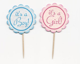 20 It's a Boy or It's a Girl  Cupcake Toppers - Picks