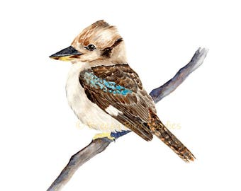 Kookaburra Print, Watercolour Tree Kingfisher, Australian Bird Art, Bird Illustration, Watercolour Kookaburra, Bird Wall Decor