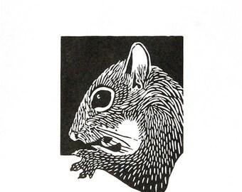 Linocut animals, squirrel, eekhoorn, hand printed wall art, matted, ready to frame, woodland animal print