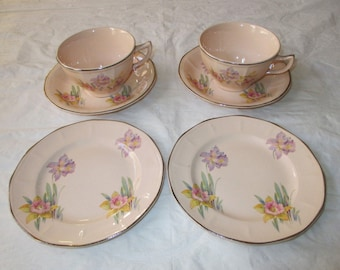 "6 pcs BROADWAY ROSE Pink Cups, Saucers, 6"" Plates, Universal Cambridge Ohio 1930s"