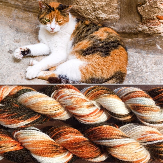 Calico Cat BFL, superwash bluefaced leicester nylon indie sock yarn