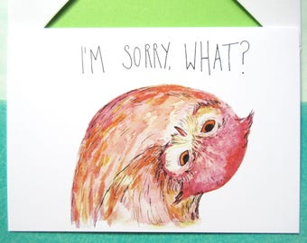 I'm Sorry, What? - Owl Greetings Card