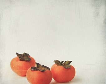 Persimmon 3 - Autumn Fruit, Exotic fruit, shizi, kaki, orange halloween, sweet autumn fall wall decor Fine Art Print