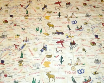 United States Map Flannel Fabric