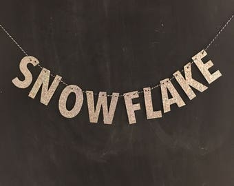 Brigit Banner: Snowflake