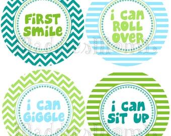Monthly Baby Boy Stickers, Milestone Stickers, Baby Month Stickers, Monthly Bodysuit Sticker, Monthly Stickers (Ryder)