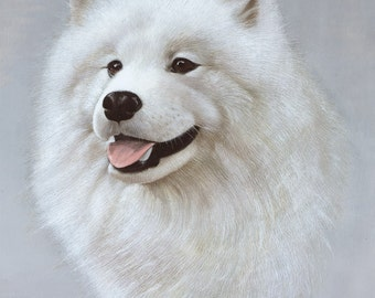 Samoyed Print by Brian Hupfield