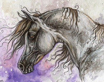 the grey arabian horse watercolor painting