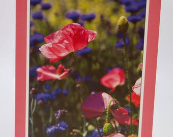 "Photo Greeting Card - Poppies - Folded 5""x7"""