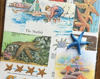 Star of the Sea Vintage Starfish Ocean Collage, Scrapbook and Planner Kit Number 2022