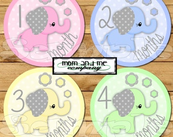 Girl Elephant Baby Monthly Stickers Baby Stickers Baby Shower gift 1- 12 Months onepiece stickers infant month stickers baby nursery