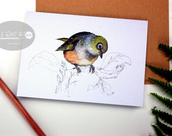 Silvereye - Waxeye folded card from the New Zealand native birds series by Emilie Geant, from original watercolor painting