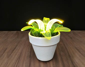Spider Plant -  Lamp - Neon LED  Desk Lamp - Night Light - Modern lamp - White Planter - Table Lamp -