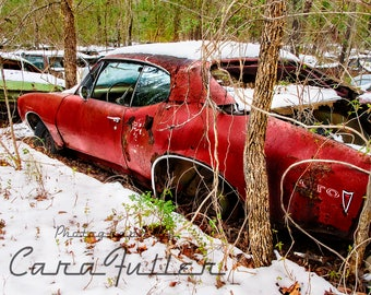 1968 Pontiac GTO in the Snowy Woods Photograph