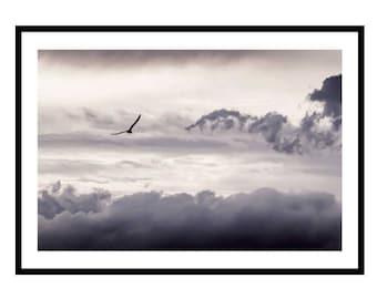 Cloud Print, Dreamscape Cloud Photography Print, Dark Clouds, Cloud Wall Art