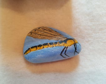 Golden Ringed Dragonfly: hand painted stone paperweight in acrylics on Scottish cobble by Alan Lees