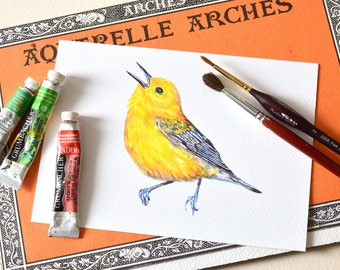 Bird Watercolor Print, Canadian Yellow Songbird, Prothonotary Warbler, Fine Art Watercolor Print, Endangered Species, Nature Conservation