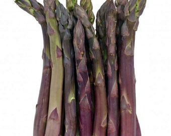 50+ Asparagus Seeds- Argenteuil- French Heirloom