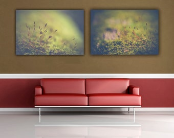 Macro Photograph, Fairyland Moss Photographs, Two Wall Print set, Large Wall Home Decor Photo Prints, Macro Photography, Macro Moss Pictures
