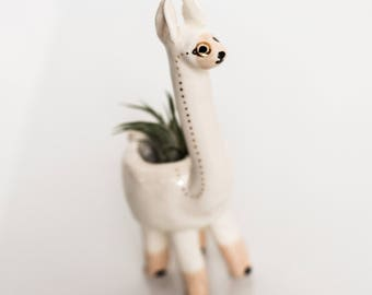 Llama Monomal (llama planter, animal planter, monocle planter, alpaca planter, cute pot, air plant)