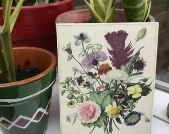 Postcard flowers, painting, garden
