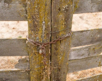 Posts with Barns