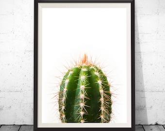Cactus art, cactus print, cactus wall art, cactus photography, cactus photo, cactus decor, botanical art, succulent artwork, digital art