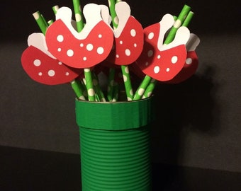 Decorative Nintendo Straws