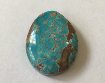 Epic Natural Pilot Mountain Turquoise.  Some of the best Nevada Turquoise we've seen in years.