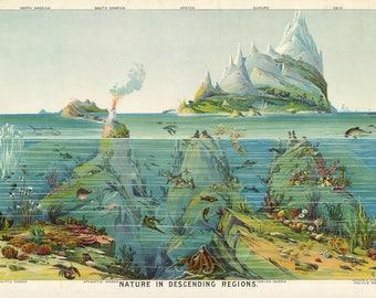 Poster / poster Descending regions 50x70cm