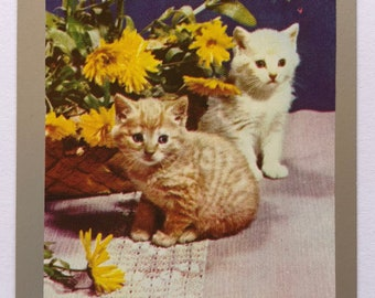 Vintage Swap / Playing Card - Two Sweet Kittens / Cats - Silver Border - Smooth Finish - Excellent Condition