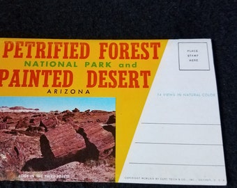 Petrified Forest Vintage Postcard Packet