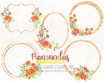 Watercolor Flower Frames, Floral, Clip Art, Watercolour, Decorative Frames, Decorative Borders, Wedding, Ranunculus, Orange, F021