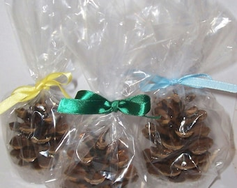 Pine Cone Fire Starters, Party Favors, Ten.  Wedding, Shower, Parties, Gifts.  Individual bags with ribbon.
