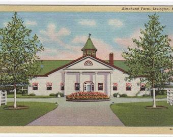 Almahurst Farm Lexington Kentucky linen postcard