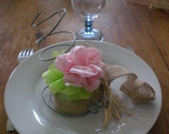 Begonia - decorative flower