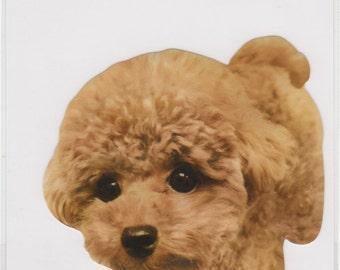 Large Dog Sticker - Mind Wave - Reference F590
